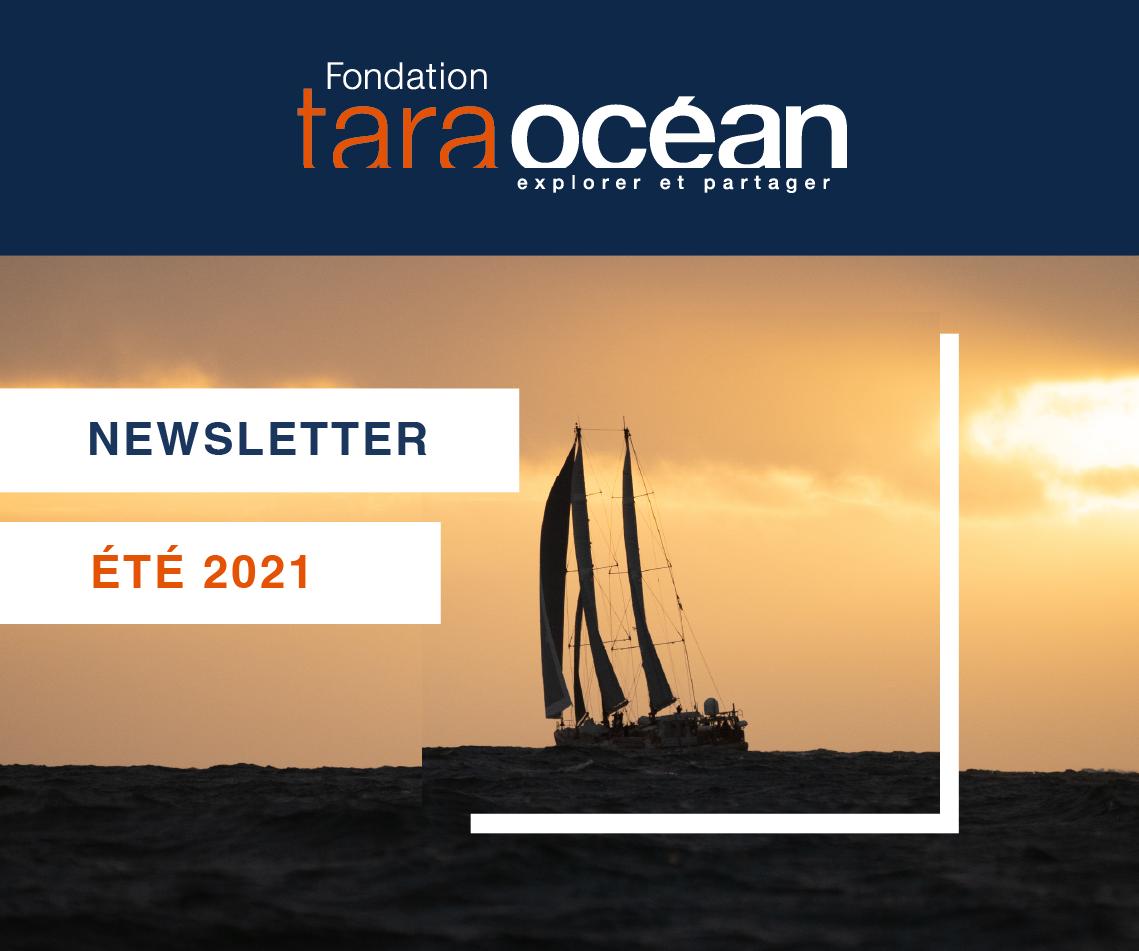 La Newsletter de la Fondation Tara Océan